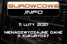 Surowcowe.info 11/02/2021 – nienadzwyczajne dane o kukurydzy