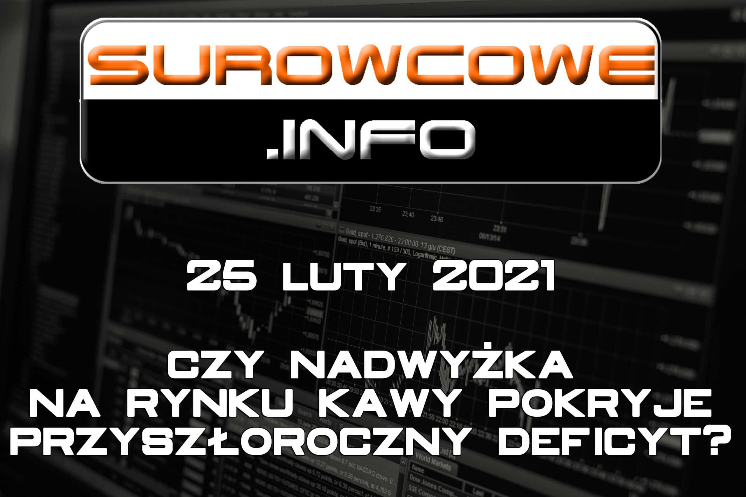Surowcowe.info 25 luty 2021
